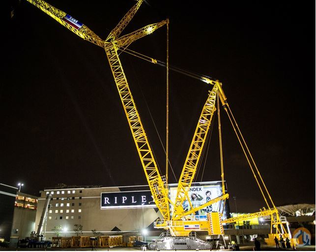 2015 LIEBHERR LR 11000 Crane for Sale in Newport News Virginia on CraneNetworkcom
