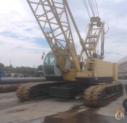 Kobelco  CK1000 Crane for Sale in Williamstown Pennsylvania on CraneNetworkcom
