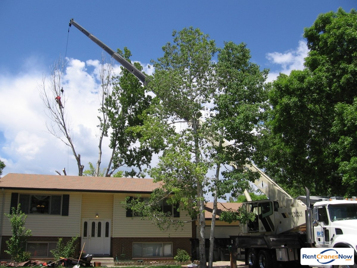 Crane for Rent in Longmont Colorado on CraneNetworkcom