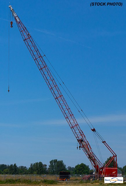 3900 Vicon Tower Crane for Rent in Clearwater Florida on CraneNetwork.com